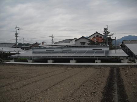 CIMG3536.JPG